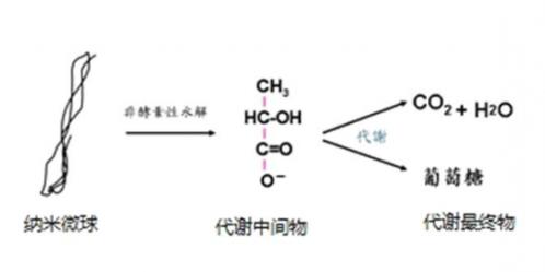 聚左旋乳酸的作用示意图