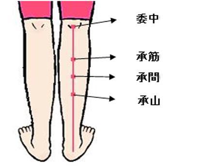 瘦腿方法_手把手教你穴位按摩瘦腿操 快速瘦腿一击即中-瘦小腿_悦美整形