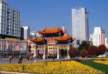 云南省整形美容协会举行成立大会