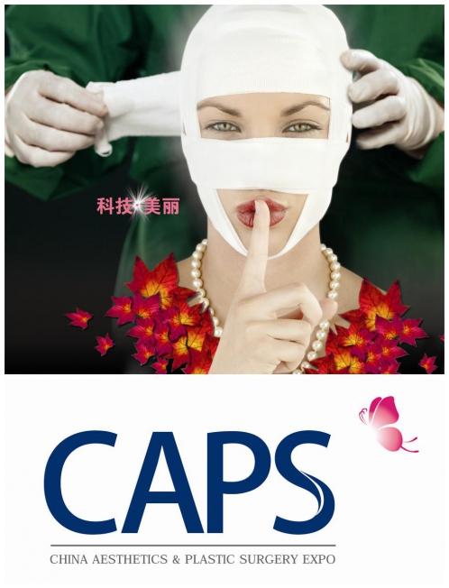 2013中国医美行业发展高峰论坛在京举行
